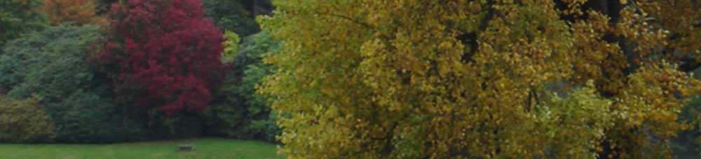 copy-HH-Header-autumn2.jpg