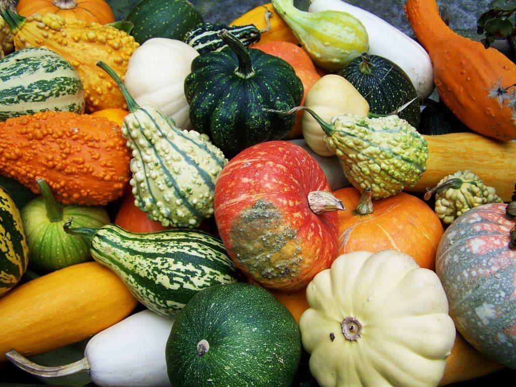 pumpkins-2931235_1280